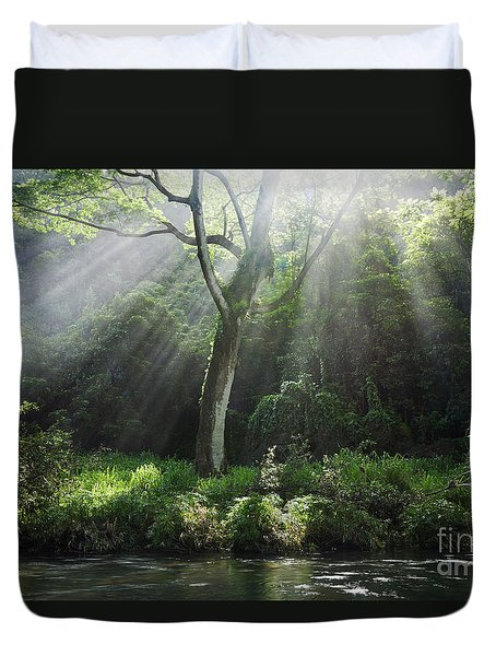 Sunlight Rays Through Trees Duvet Cover by M Swiet Productions