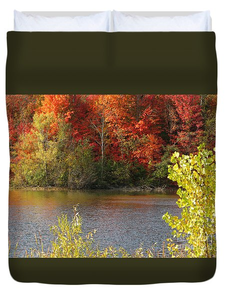 Sunlit Autumn Duvet Cover by Ann Horn