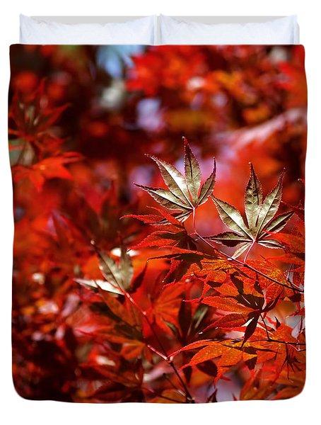 Sunlit Japanese Maple Duvet Cover