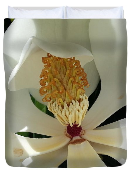 Sunny And Shy Magnolia Duvet Cover by Caryl J Bohn