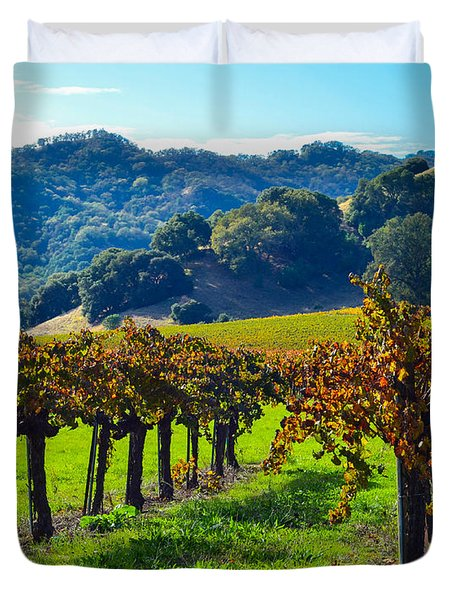 Sunny Autumn Vineyards Duvet Cover by CML Brown