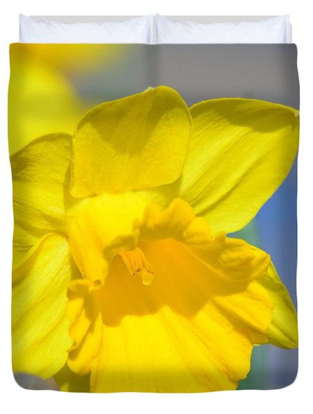 Sunny Days Of The Daffodil Duvet Cover by Maria Urso