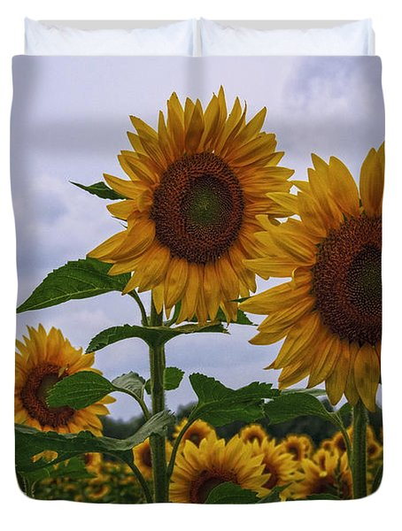 Duvet Cover featuring the photograph Sunny Faces by Debra Fedchin