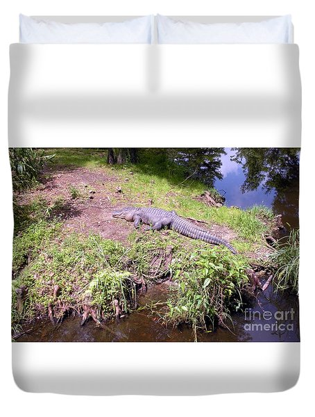 Duvet Cover featuring the photograph Sunny Gator  by Joseph Baril