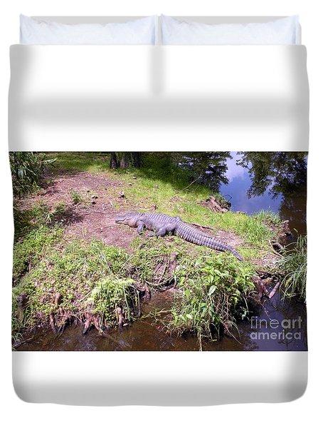 Sunny Gator  Duvet Cover
