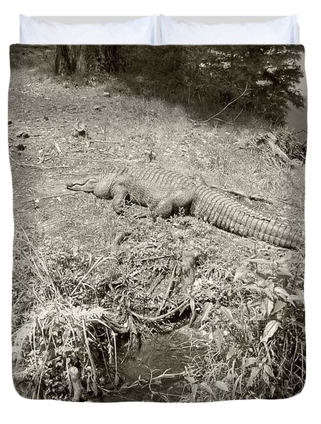 Duvet Cover featuring the photograph Sunny Gator Sepia  by Joseph Baril