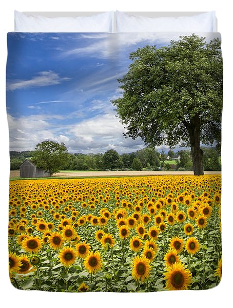 Sunny Sunflowers Duvet Cover by Debra and Dave Vanderlaan
