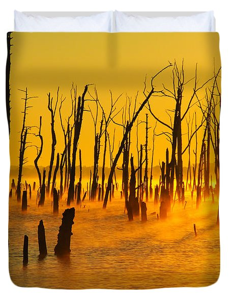 Sunrise Fog Shadows Duvet Cover by Roger Becker