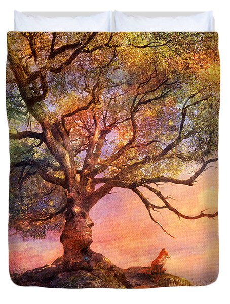 Sunset At Fox Mountain Duvet Cover by Aimee Stewart