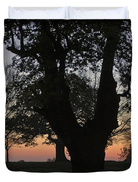 Sunset In Richmond Park Duvet Cover