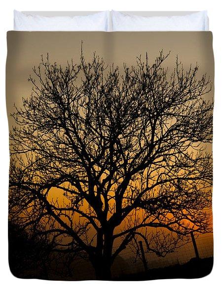 Sunset Tree Duvet Cover by Anne Gilbert