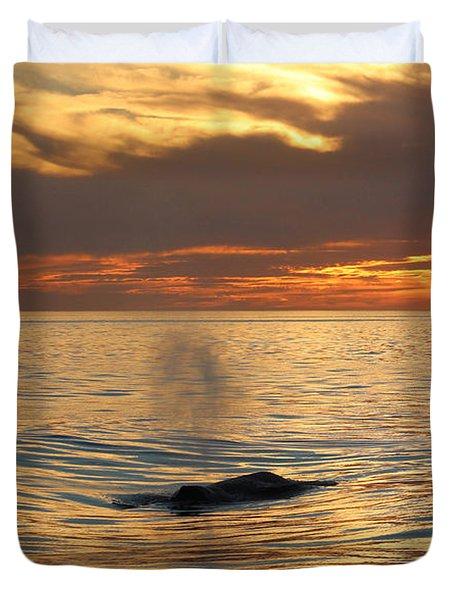 Sunset Wonder Duvet Cover