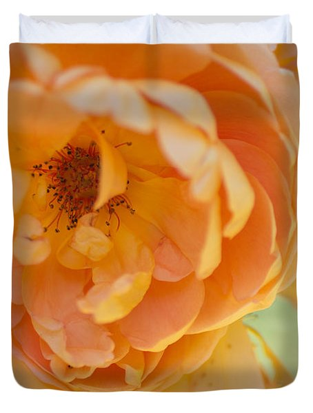 Duvet Cover featuring the photograph Sunshine by Julie Andel