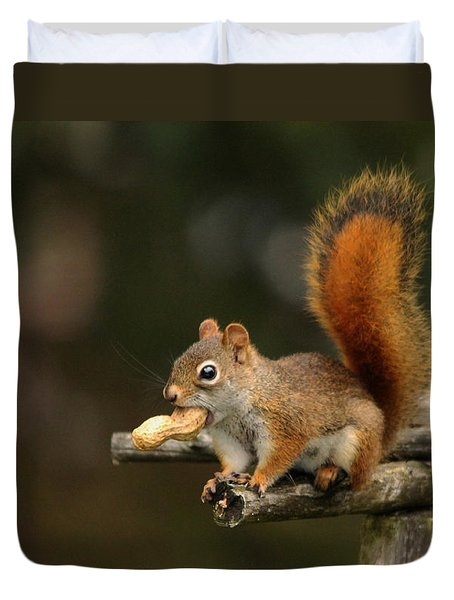 Surprised Red Squirrel With Nut Portrait Duvet Cover by Debbie Oppermann
