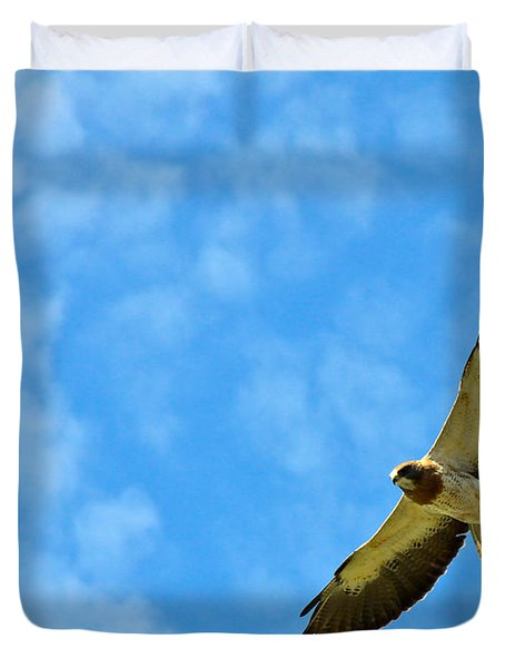Swainson's Hawk Snake River Birds Of Prey Natural Conservation Area Duvet Cover by Ed  Riche