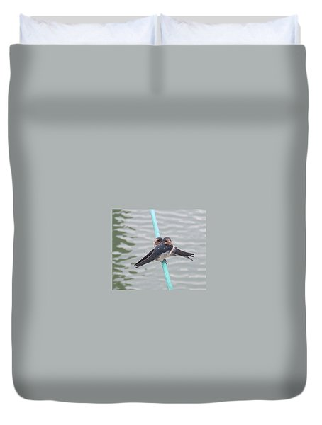 Swallows Duvet Cover