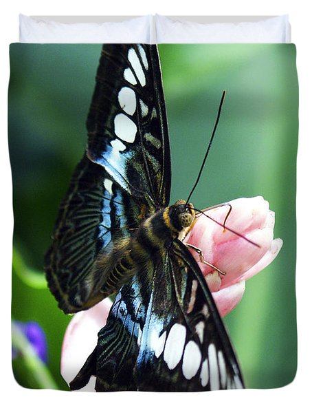 Swallowtail Butterfly Duvet Cover by Marilyn Hunt