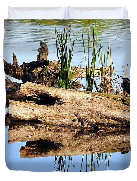 Swamp Scene Duvet Cover by Al Powell Photography USA