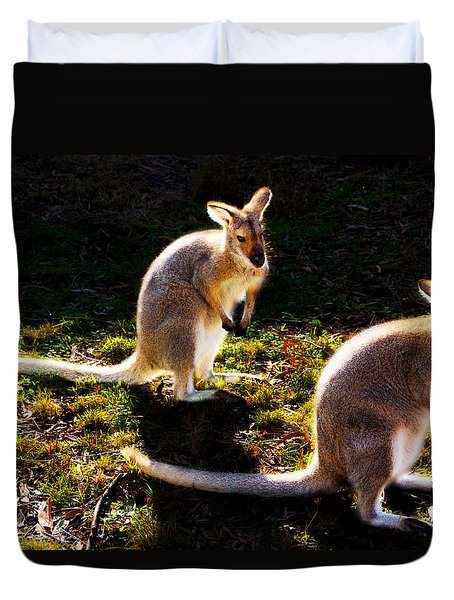 Red-necked Wallabies Duvet Cover
