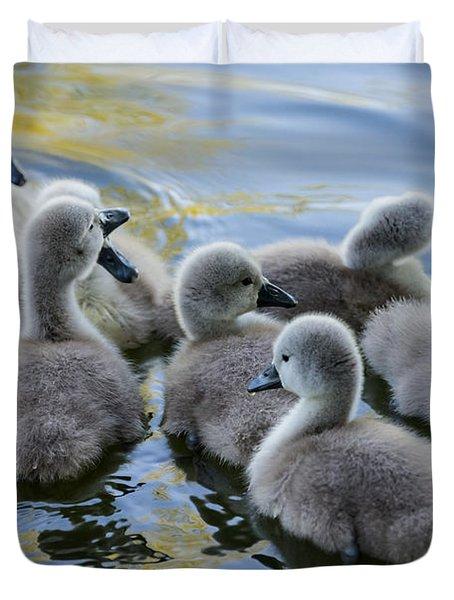 Swan Babies Duvet Cover