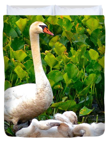 Swan Song Duvet Cover by Frozen in Time Fine Art Photography
