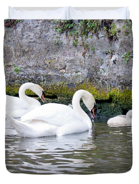 Swans And Cygnets In Brugge Canal Belgium Duvet Cover