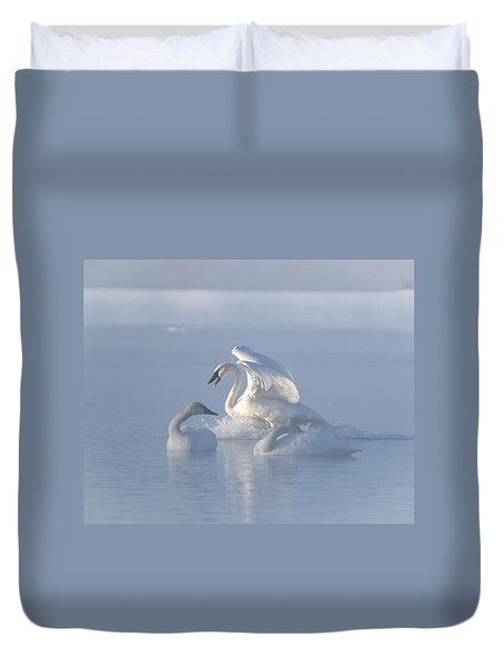 Trumpeter Swans - Three's Company Duvet Cover by Patti Deters