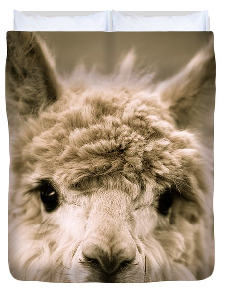 Sweet Alpaca Duvet Cover