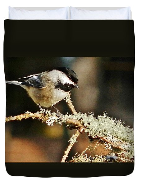 Sweet Little Chickadee Duvet Cover by VLee Watson