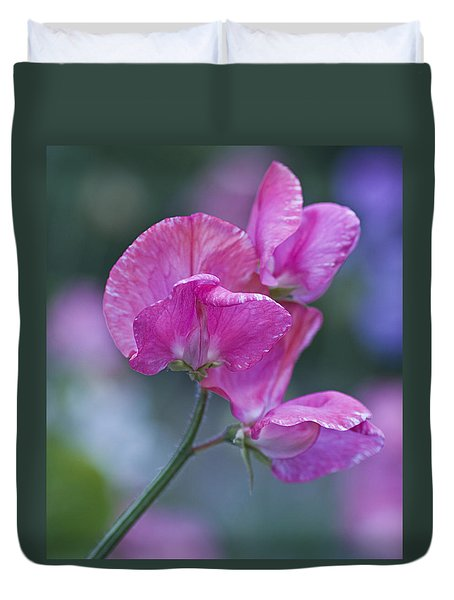 Sweet Pea In Pink Duvet Cover