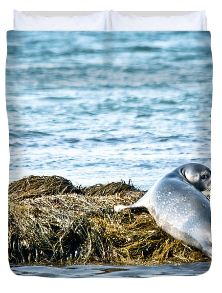Sweet Seal Duvet Cover