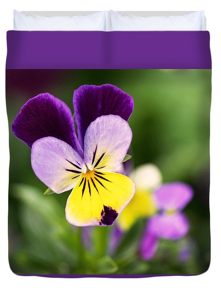 Sweet Violet Duvet Cover by Rona Black