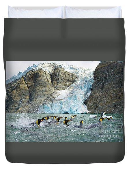 Swimmings King Penguins And Glacier Duvet Cover by Yva Momatiuk John Eastcott