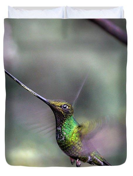 Sword-billed Hummingbird Hovering Ecuador Duvet Cover