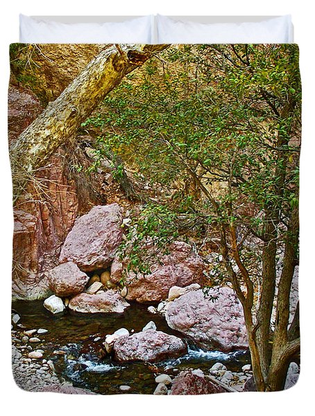 Sycamore And Cottonwood In Whitewater Catwalk National Recreation Trail Near Glenwood-new Mexico  Duvet Cover by Ruth Hager