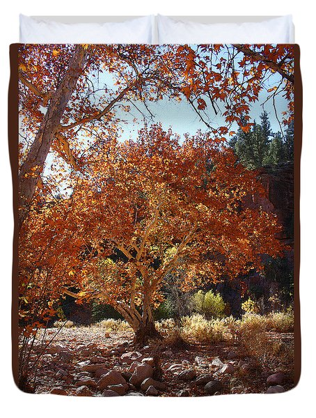 Sycamore Trees Fall Colors Duvet Cover