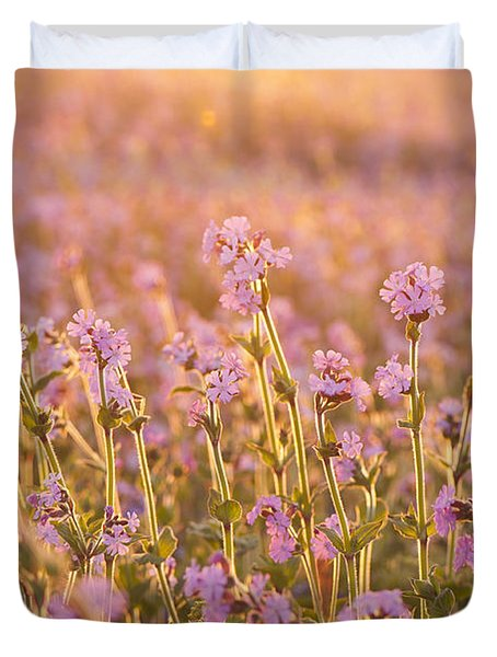 Symphony In Pink Duvet Cover by Anne Gilbert