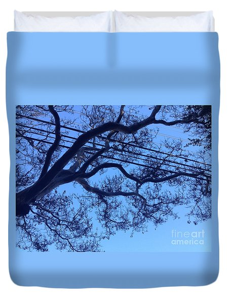 Duvet Cover featuring the photograph Symphony by Nora Boghossian