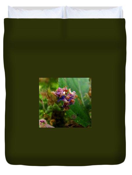 Synchlora Aerata Caterpillar 2 Duvet Cover