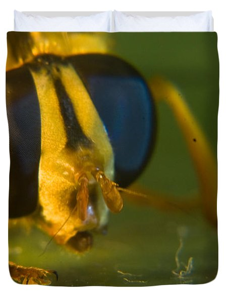 Syrphid Eyes And Antennae Duvet Cover