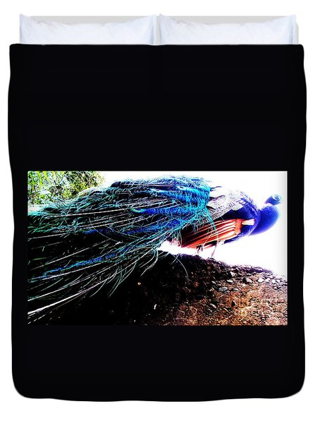 Tail Of Peacock Duvet Cover