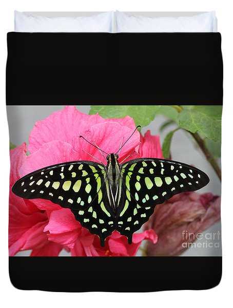 Duvet Cover featuring the photograph Tailed Jay Butterfly #6 by Judy Whitton