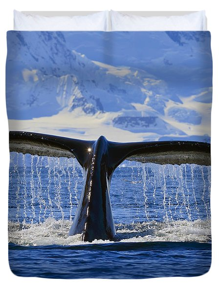 Tails From Antarctica Duvet Cover