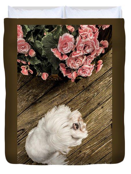 Havanese Puppy Duvet Cover