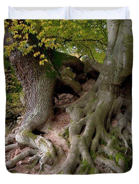 Taking Root Duvet Cover by Heiko Koehrer-Wagner
