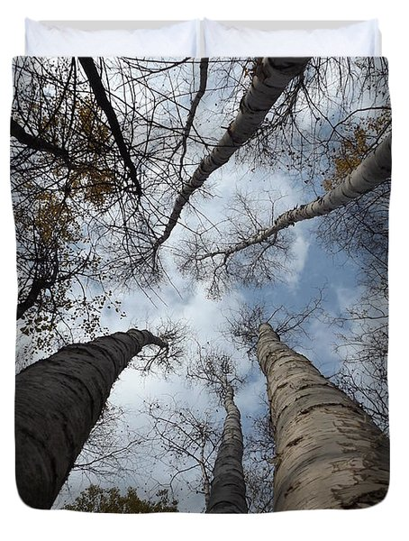 Tall Birch Circle Duvet Cover