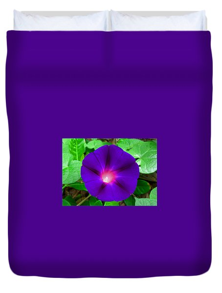 Tall Morning Glory Duvet Cover by William Tanneberger