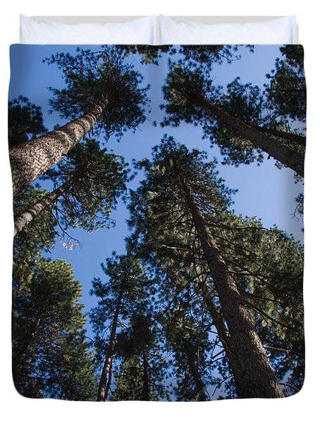 Talls Trees Yosemite National Park Duvet Cover