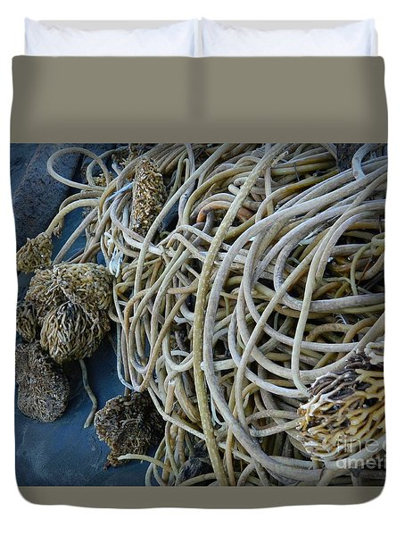 Tangles Of Seaweed 2 Duvet Cover by Chalet Roome-Rigdon