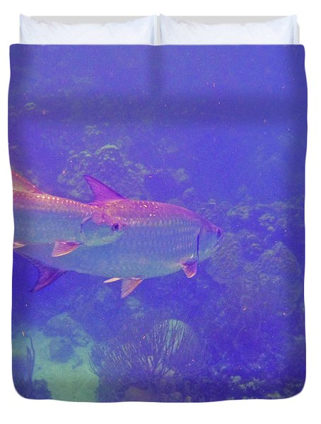 Tarpon Reef Duvet Cover by Carey Chen